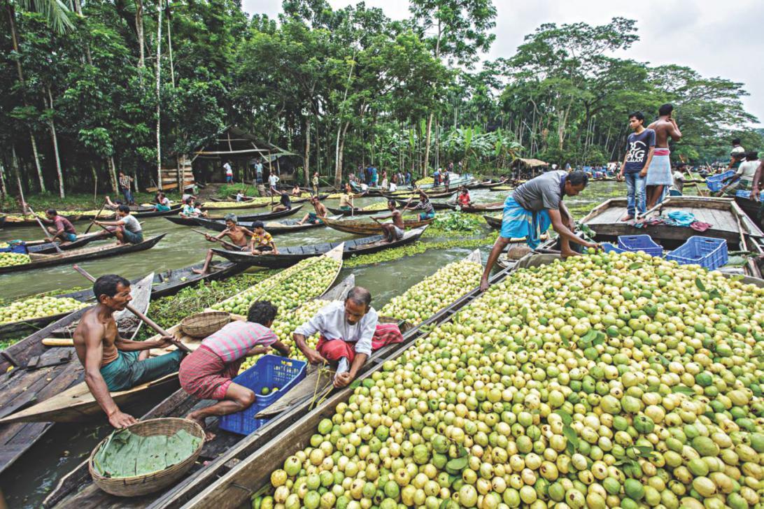 Bhimruli floating market.jpg