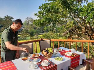 Breakfast in the Machan overlooking the mustard field