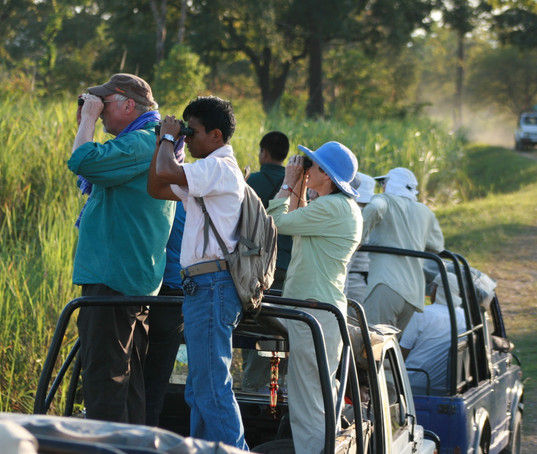 Jeep Safari in kaziranga.jpg