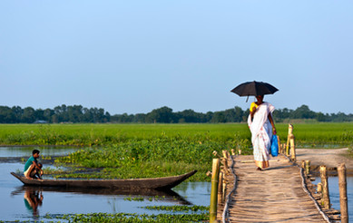 A typical Majuli scene