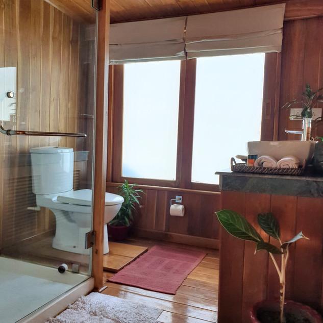 M.V. Rudra Singha bathroom