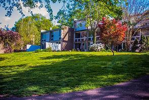 Hickory Cluster at Lake Anne Plaza, Reston VA © Melinda Z Szilagyi