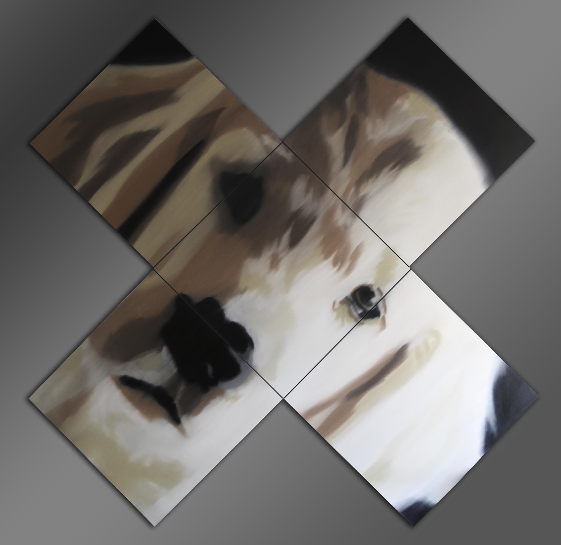 Imortalidade da Alma Canina