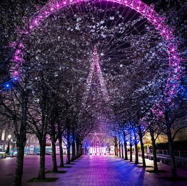 London Eye, SE1