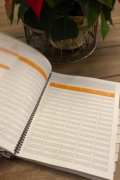2021 Customized Planner for Aspiring and Growing Six-Figure Coaches!