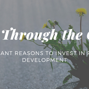 Blooming Through the Cracks: 6 Important Reasons to Invest in Personal Development
