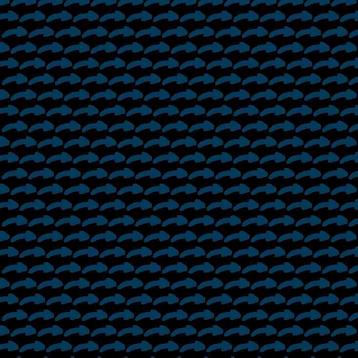 Arrow pattern@4x.png