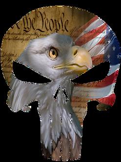 Constitution Punisher