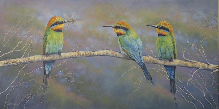 rainbow beeters gathering - Janet Day MOS