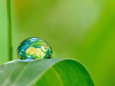 We hebben integrale ecologie nodig!