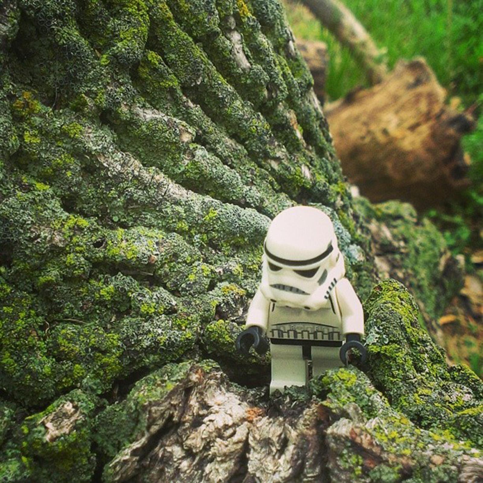 #thelonelytrooper-029.jpg