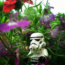 #thelonelytrooper-011.jpg