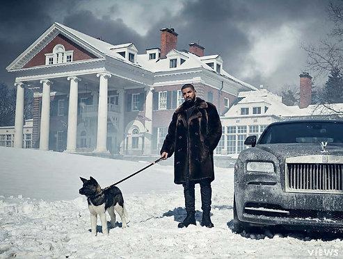 Views Poster- Drake