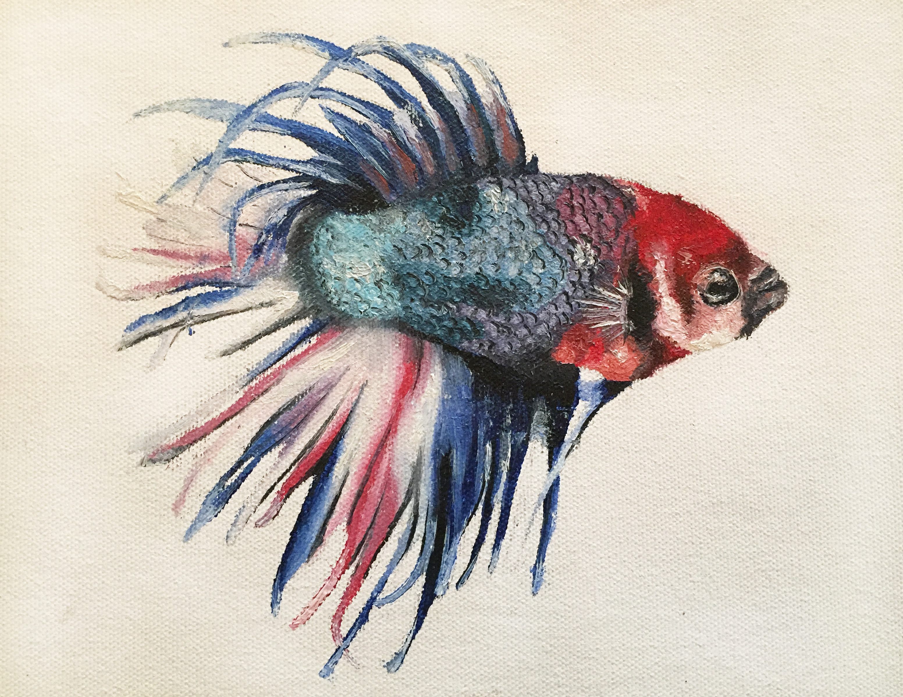 Beta Fish Oil Painting