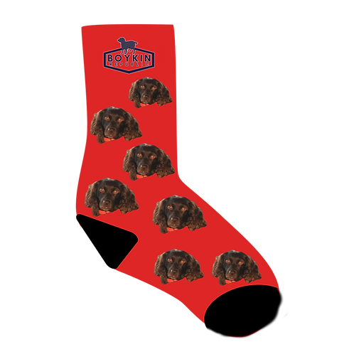 Sock Customized with your Fluffy Friend