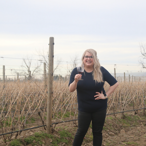Wine Country Wanderlust - The Ideal Romantic Walla Walla Getaway in 2020