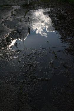 """Reflection"""