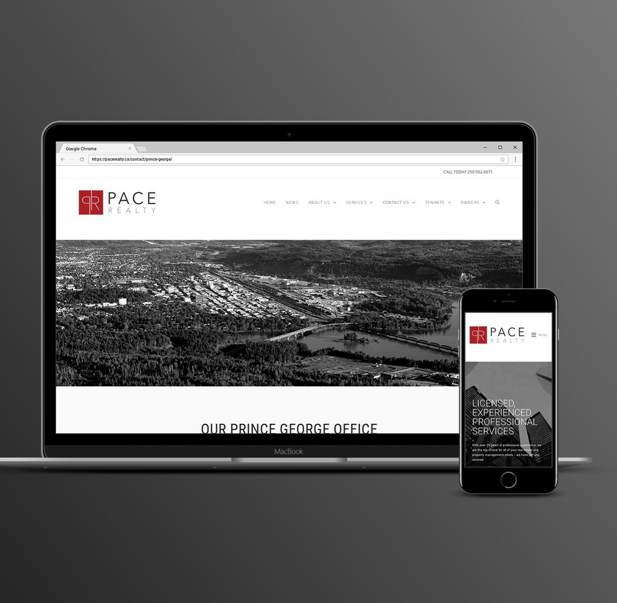 Pace Realty Website