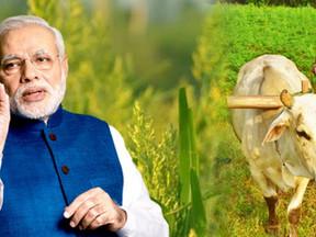 प्रधानमंत्री नरेन्द्र मोदी करेंगे देश भर के किसानों के साथ सीधा संवाद