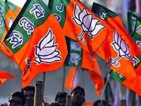 दिल्ली चुनाव में 370 सांसद उतारेगी बीजेपी