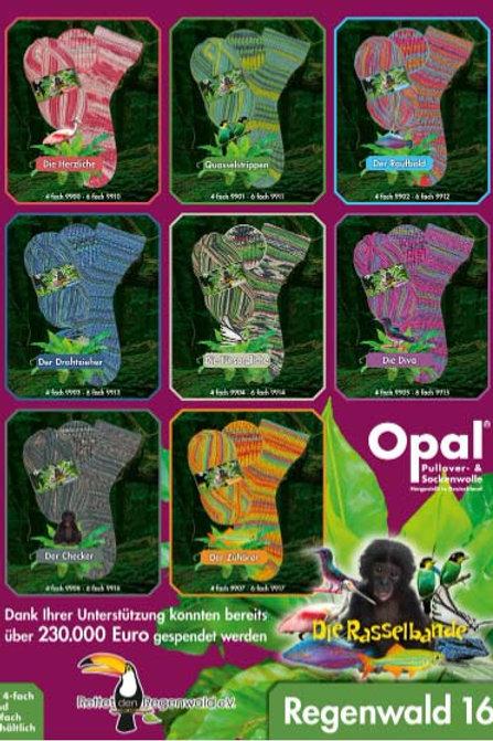 Opal Regenwald 16