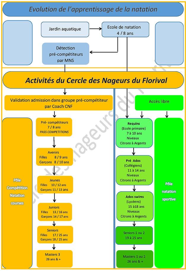 Evolution-de-l_apprentissage-rev2_edited.jpg