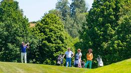 2019_06_LIONS_Charity_Golf_3626.jpg