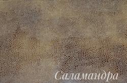 Саламандра 1