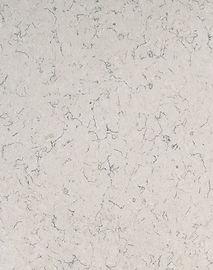 Carrara Mist™ SLAB.jpg