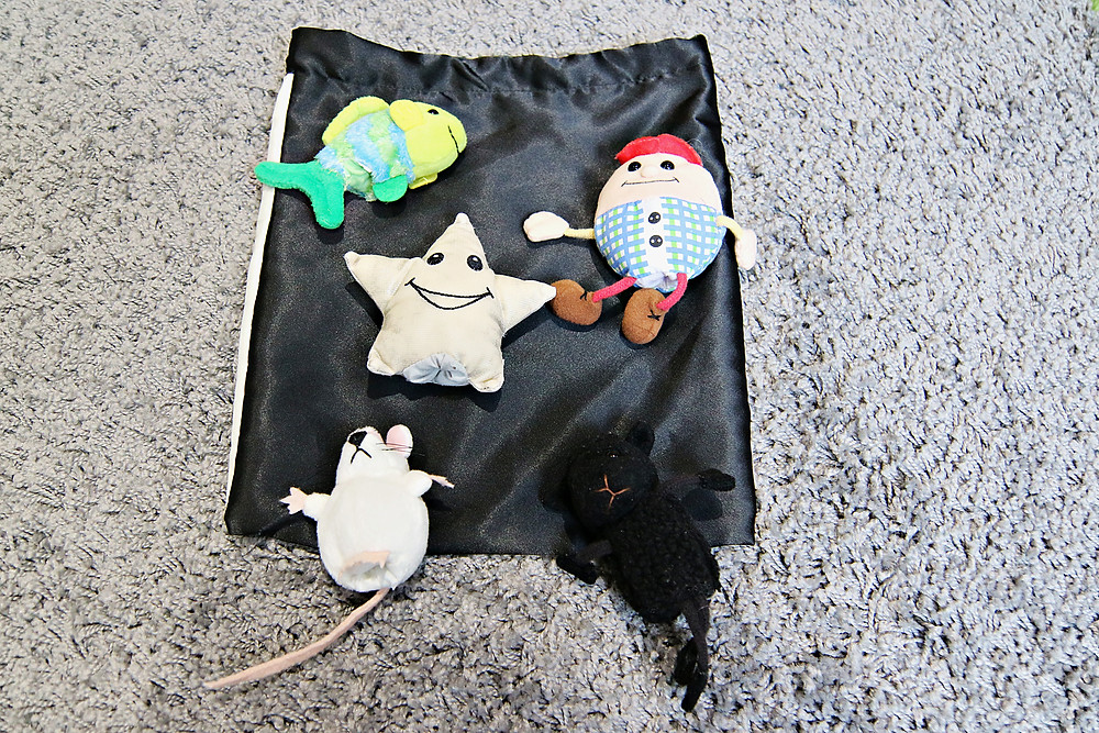 Puppets and song bag
