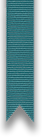 teal ribbon.png