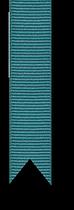 teal ribbon.png