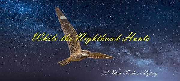 While the Nighthawk Hunts.jpg