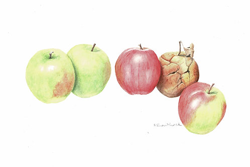 Note Card: One Bad Apple
