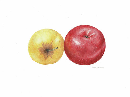 Note Card: Eating Apples