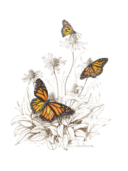 Note Card: Monarch Butterflies