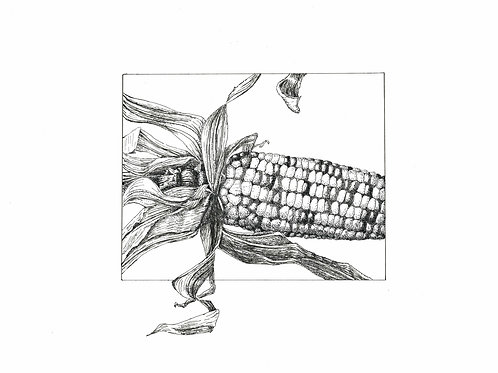 Original: Indian Corn
