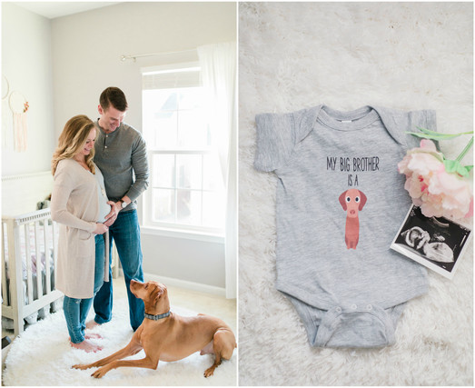 dc-baltimore-maryland-maternity-dog-announcement