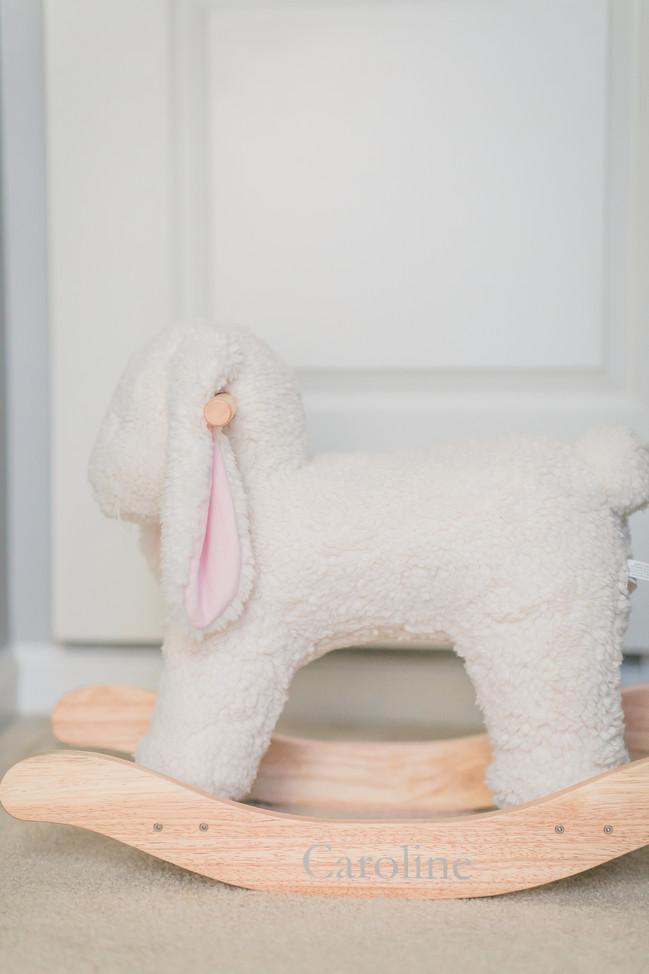dc-maternity-nursery-lamb.jpg
