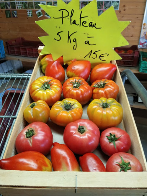 Plateau de Tomates anciennes mélangéess
