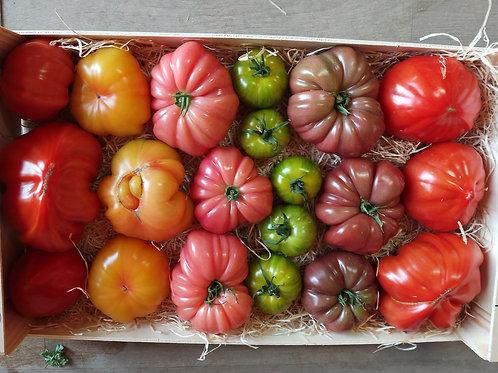 Plateau Tomates anciennes