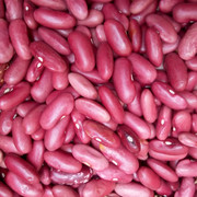 RED KIDNEY BEANS CLOSE UP