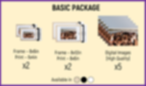 BASIC PACKAGE.png