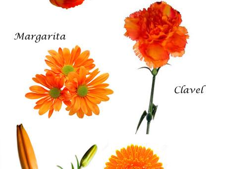 Flores Naranjas (significado)