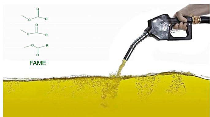 Determinación de FAME en mezclas de biodiesel