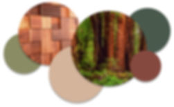 redwood_color.jpg