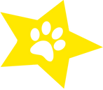 star image.png