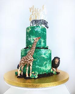 micah cake.JPG