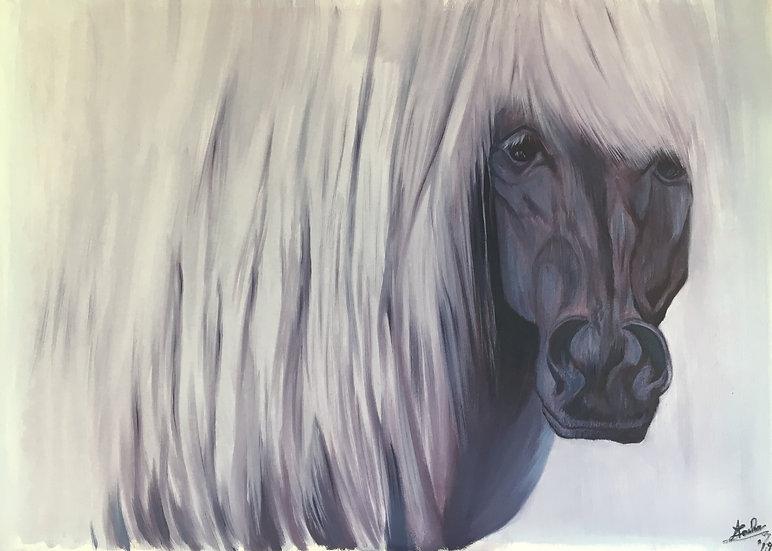 HORSE - Anca Leahu