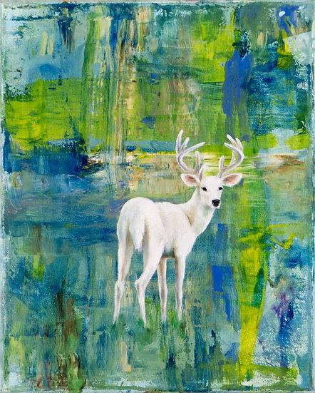 WHITE DEER - Lisa Braun